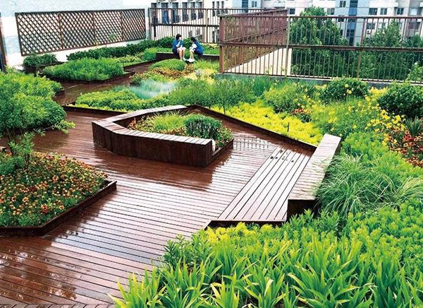 屋顶花园绿化