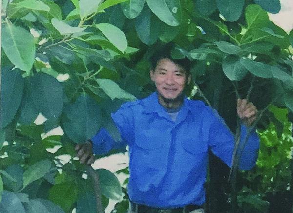 深圳屋顶绿化