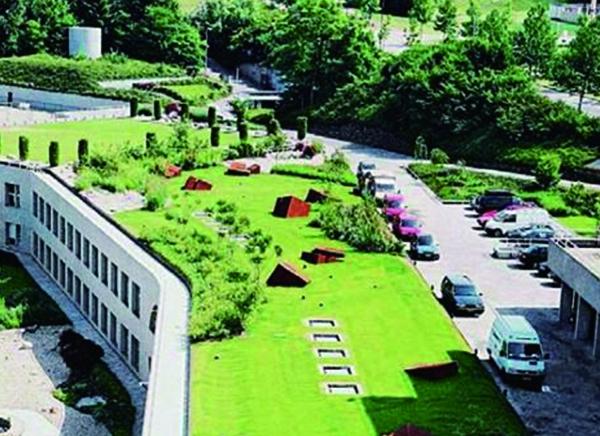屋顶绿化设计