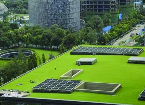 屋顶绿化技术