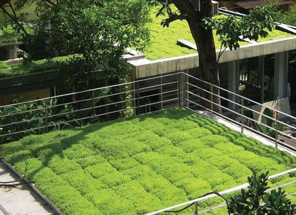 屋顶绿化价格