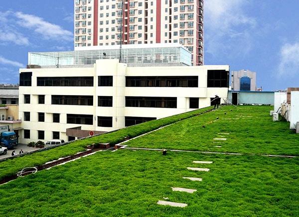 屋顶绿化施工方案